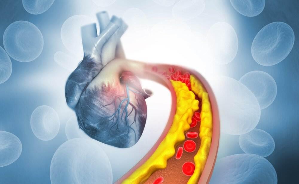 Hai il colesterolo alto e non riesci in nessun modo a farlo scendere pur mangiando bene? Ecco quale può essere la giusta alimentazione.